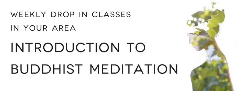 Drop in Meditation Classes in Houston, Montrose, The Heights and The Woodlands