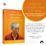 How to Understand the Mind: Applying Wisdom to Stop Anxiety